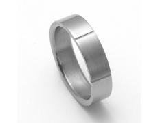 Pánský titanový snubní prsten TTN1001